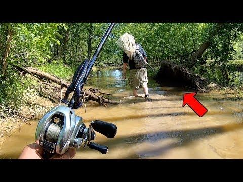 Fishing A FLOODED SWAMP For FRANKENFISH!!!