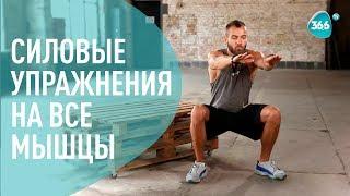 Комплекс силовых Упражнений на все мышцы ДОМА | ФИТНЕС | Дмитрий Мамонтов
