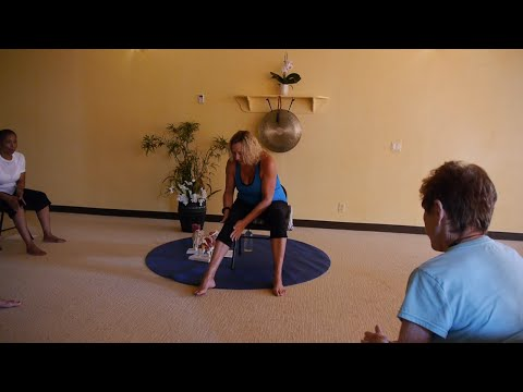 1 Hr Chair Yoga Class for Osteoarthritis Relief with Justine Shelton, E-RYT500