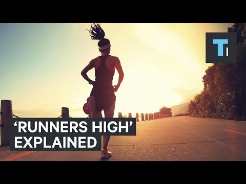 """What happens to your brain when you get a """"runner's high"""""""