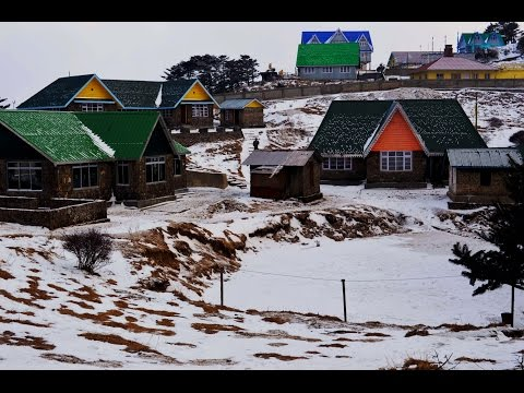 Snowfall at Sandakphu & Phalut | West Bengal | From a Tourist's eye | Explore the ODD