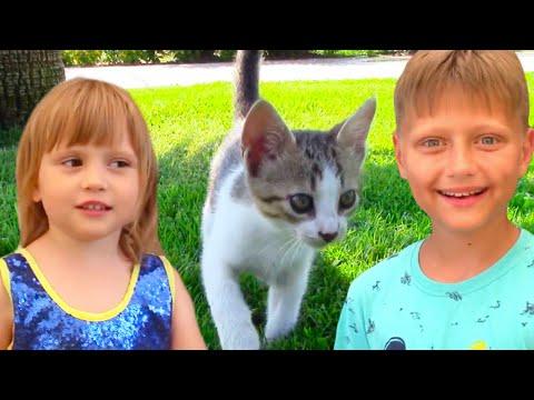 Влог Игорь и Арина нашли Котенка в отеле | Видео для детей