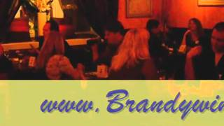 Brandywine Singles Speed Dating Party 2011