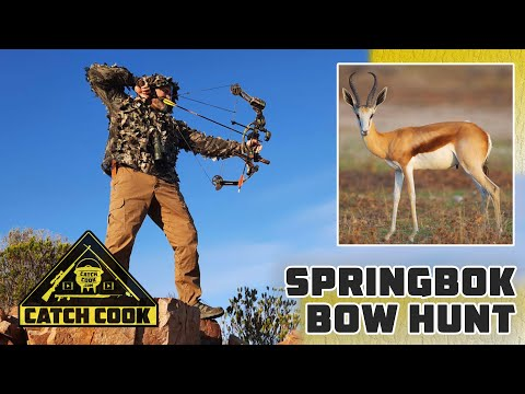 Amazing Springbok bow hunt in the Karoo - catch cook