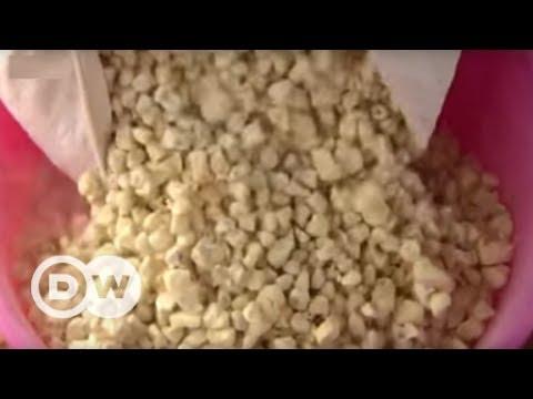 Baobab - the zero-waste superfood | DW English