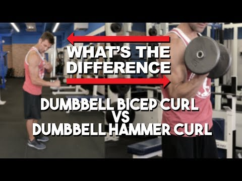 Hammer Curl vs Bicep Curl What's The Difference?