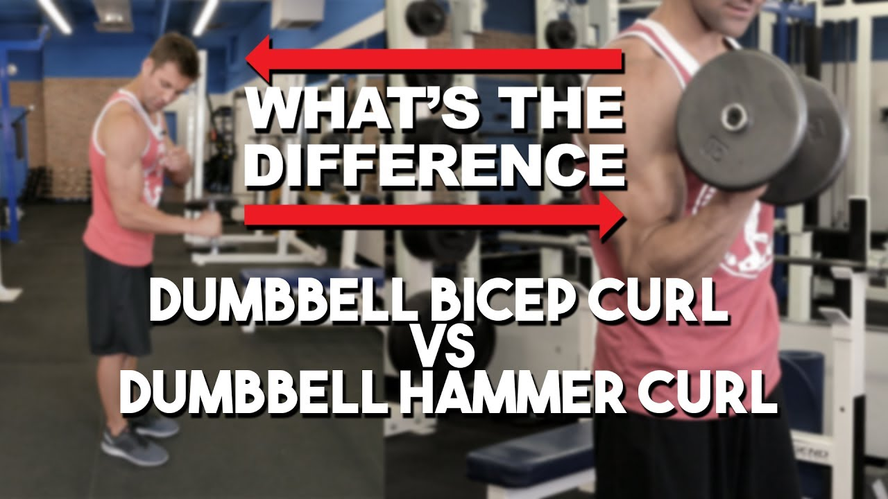 hammer curls vs regular curls
