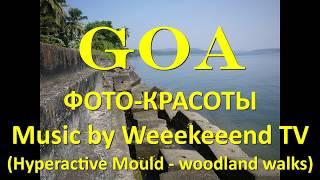 ГОА ФОТО КРАСОТЫ Goa photo beauty путешествие в Гоа