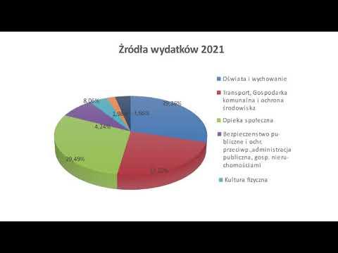 Sytuacja finansowa miasta Radlin (2020)