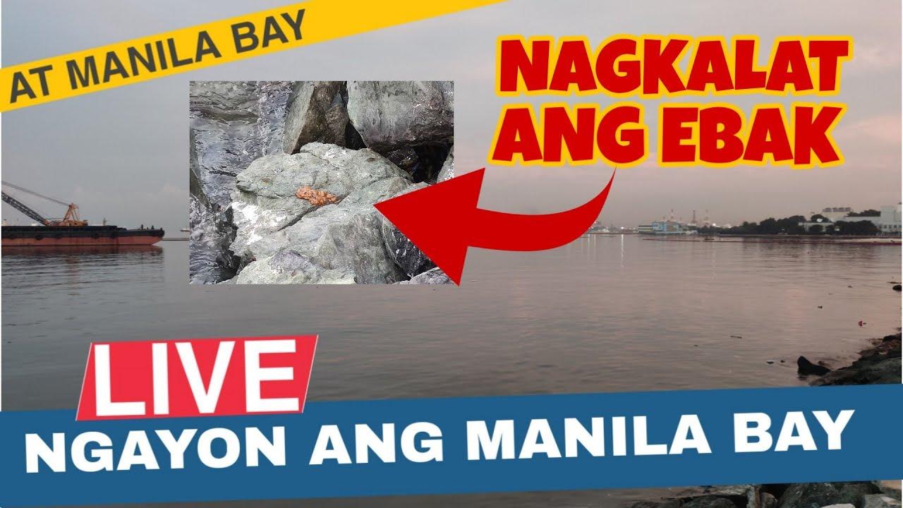Download Live: Manila Bay Update