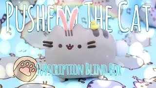 Unbox Daily: PUSHEEN THE CAT Subscription Blind Box | Vinyl Fugure, Clothing & Much More thumbnail