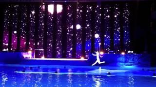 шоу олимпийских чемпионов 2012