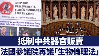 抵制器官販賣 法國參議院再議「生物倫理法」|新唐人亞太電視|20200129