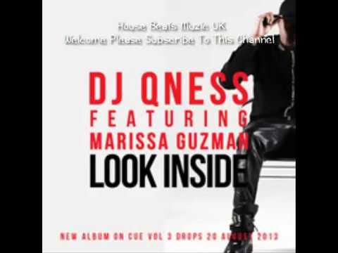 DJ Qness Look Inside Radio Edit)