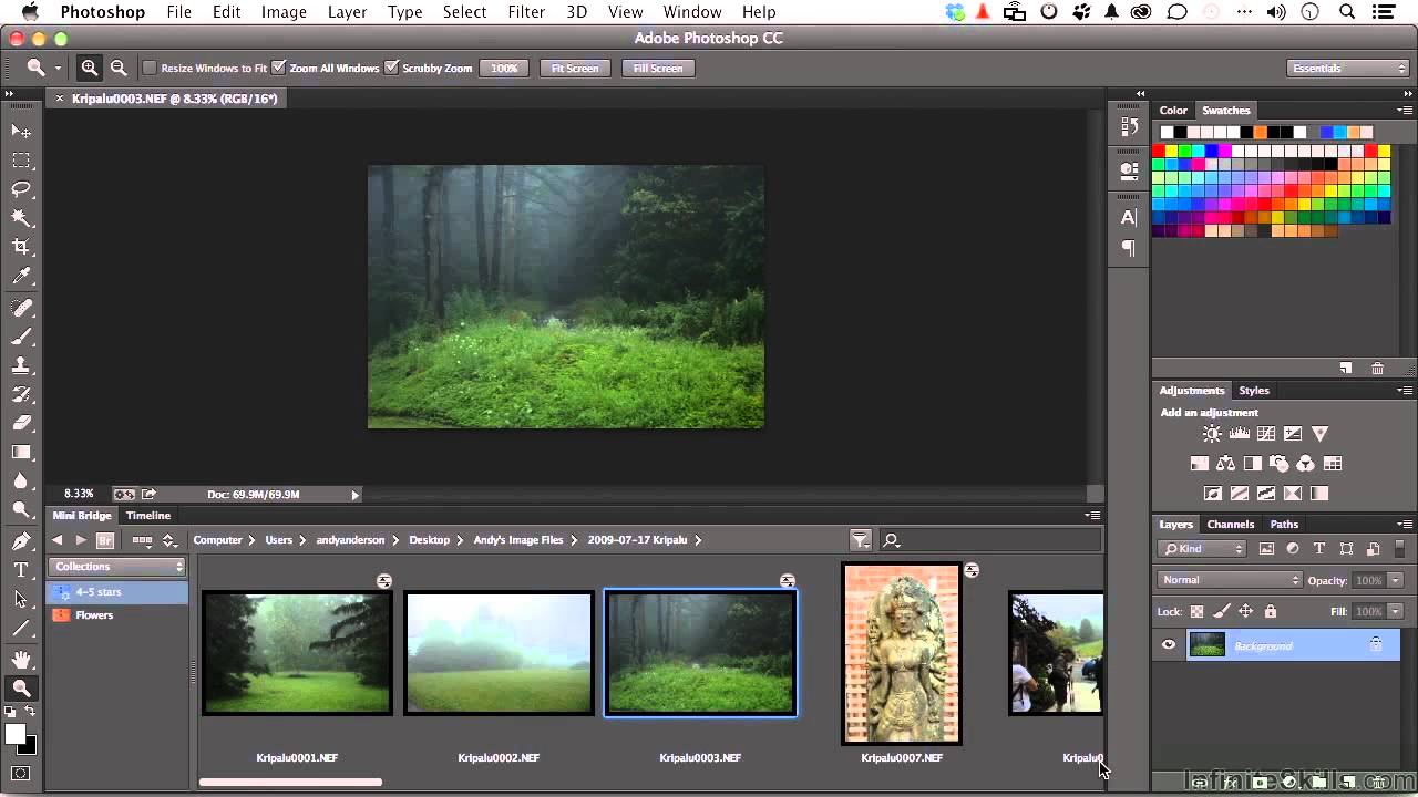Adobe photoshop cc for photographers tutorial working smart with adobe photoshop cc for photographers tutorial working smart with mini bridge baditri Gallery