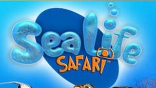 Sea Life Safari - Let