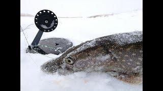 ВОТ ТАК СЮРПРИЗ Рыбалка 2019 2020 Щука на жерлицы окунь и плотва на безмотылку