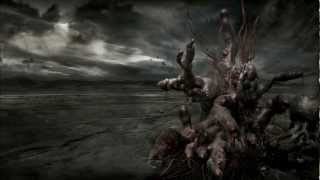 Unfathomable Ruination - Preface to the Forlorn Spectrum (NEW SONG 2012)