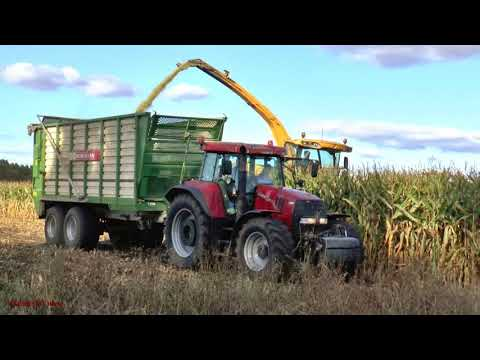 Maize Harvest with New Holland.  Case and NH Action.