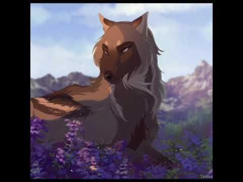 Domain Anime Wolves-Here I Am