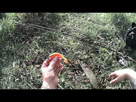 ловля в траве на спиннинг