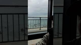 카폐앞 바다 풍경 보면서 커피 한잔 여유~~^^