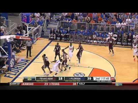 02/01/2014 Texas A&M vs Florida Men's Basketball Highlights