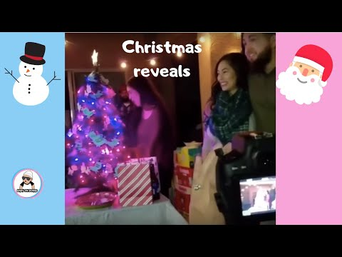 CHRISTMAS BABY GENDER REVEAL COMPILATION 2017