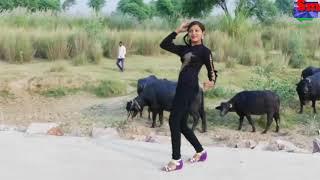 Balam Ludhiana Se aaja na 2019 superhit dance