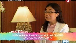 Mga dapat malaman tungkol sa dengue