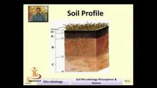 SANDHAN (AGIC): Soil Microbiology: Rhizosphere & Humus