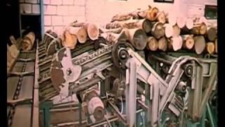 Создание  лесопиления и деревообработки с ''0'' до полного ввода в строй