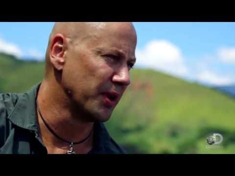 В поисках сокровищ: Змеиный остров   Treasure Quest: Snake Island   Трейлер    2015