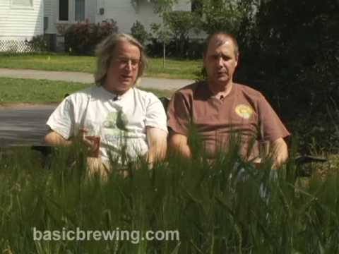 Basic Brewing Video - Homegrown Barley and Container Hops - March 24, 2009