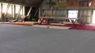 Чемпионат Луганской области по спортивной гимнастике