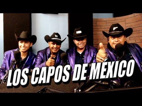Los Capos de México  Entrevista