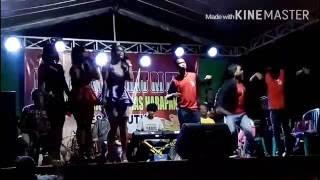 Video Sambalado all artis live in mrutuk download MP3, 3GP, MP4, WEBM, AVI, FLV Agustus 2017