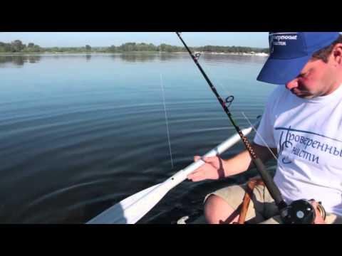ловля сома на квок с лодки с эхолотом