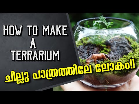 How to make a terrarium | Making a Bottle Terrarium|പൂന്തോട്ടം കുപ്പിയിൽ 🌹🌴 sk natural vlogs