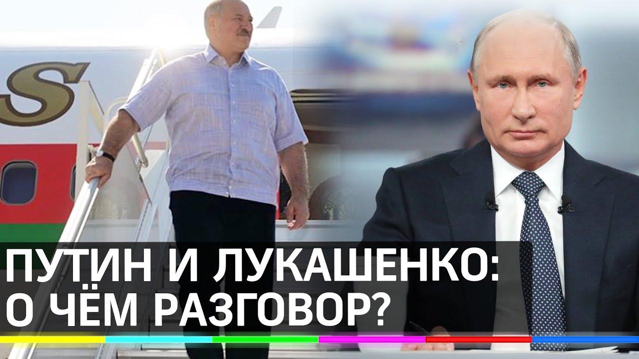 Встреча с глазу на глаз. Путин и Лукашенко, прилетевший из Белоруссии, проводят переговоры в Сочи
