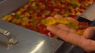 In der Haribo-Fabrik: So entstehen Gummibärchen