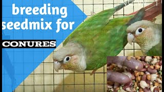 breeding seedmix for conures/softfood for conures