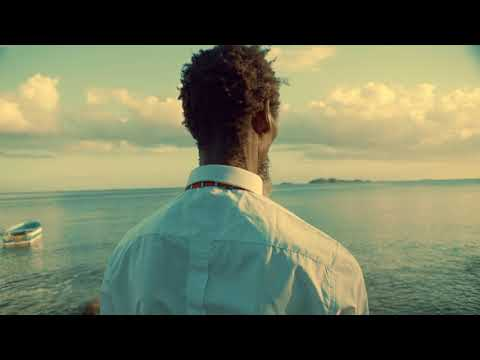 Freetown Collective - Space for a Heart [Official Music Video]