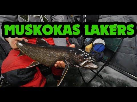 Ice Fishing Ontario - Muskoka Lake Trout Jan 30, 2016