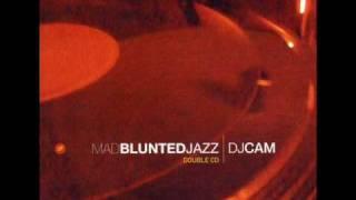 DJ Cam - Dieu Reconnaitra Les Siens [1996]