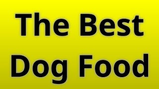 Best Dog Food