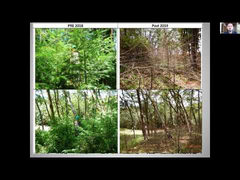 Using Rx Fire To Manage Second-growth Redwood & To Manage Douglas-fir Encroachment In Oak Woodlands