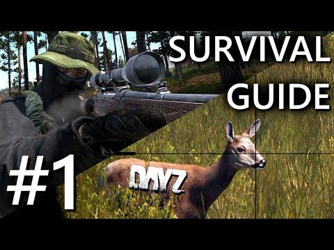 Der ULTIMATIVE Survival Guide für DayZ #1 | Der ideale Start | DayZ Anfänger Guide PC PS4 XboX