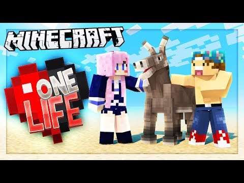 Download Youtube: ADOPTING A DONKEY w/LIZZIE! | One Life SMP #54