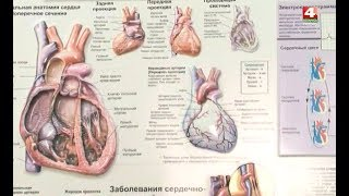Новости Гродно. Профилактика кардиологических заболеваний. 24.09.2018